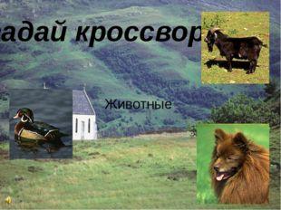 Угадай кроссворд Животные