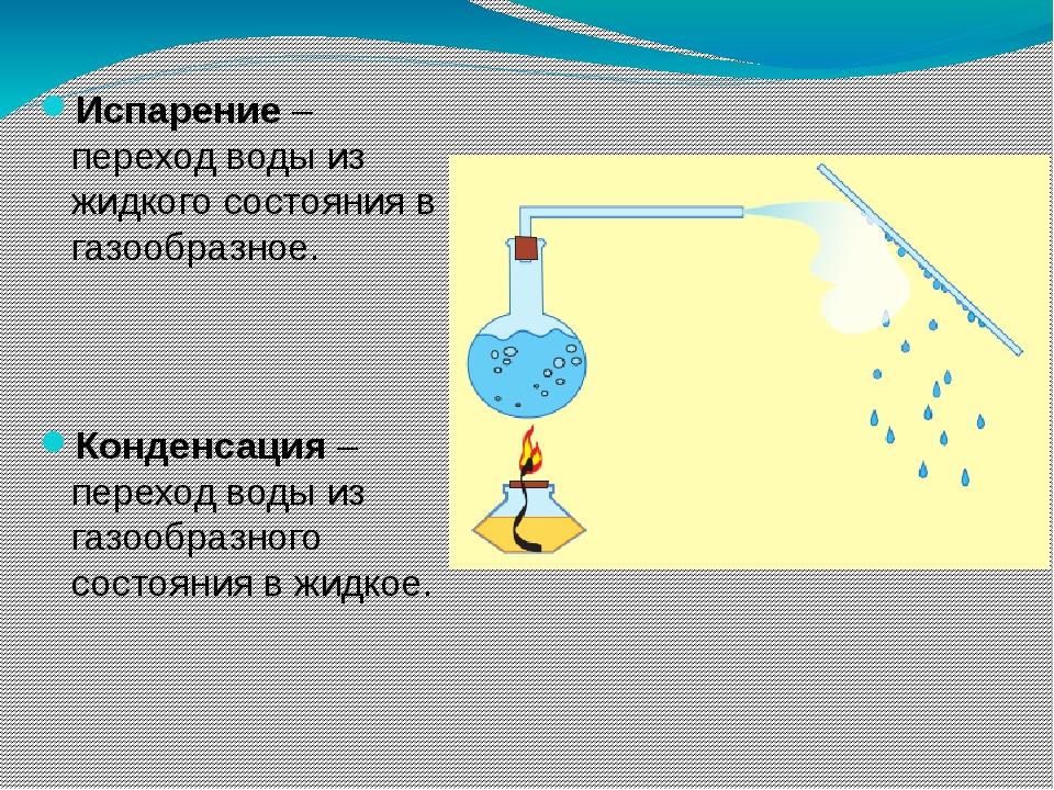 Испарение – переход воды из жидкого состояния в газообразное. Конденсация – п...