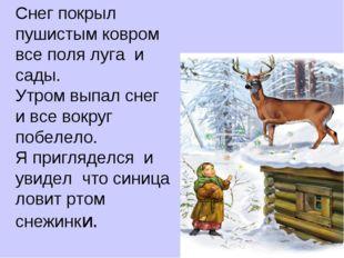 Снег покрыл пушистым ковром все поля луга и сады. Утром выпал снег и все вок