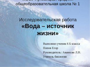 МБОУ Луховицкая средняя общеобразовательная школа № 1 Исследовательская работ