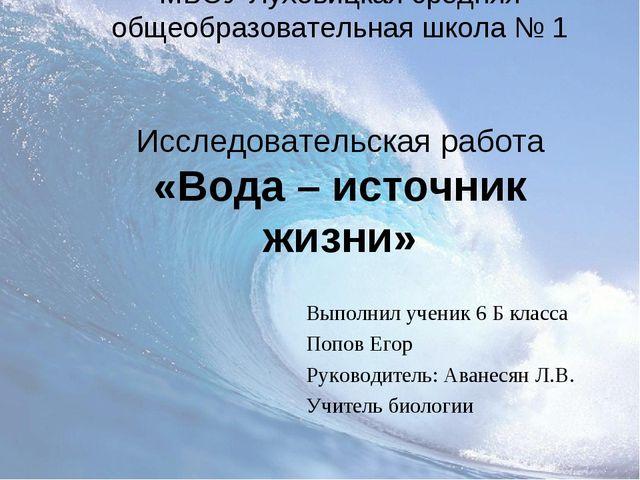 МБОУ Луховицкая средняя общеобразовательная школа № 1 Исследовательская работ...