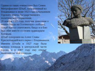 Одним из таких «чекистов» был Семен Митрофанович Штыб, направленный во Влади