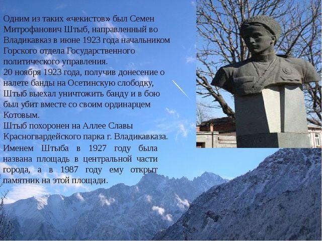 Одним из таких «чекистов» был Семен Митрофанович Штыб, направленный во Влади...