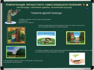 3. В лесу будем стараться ходить по тропинкам ,чтобы растения не погибали от