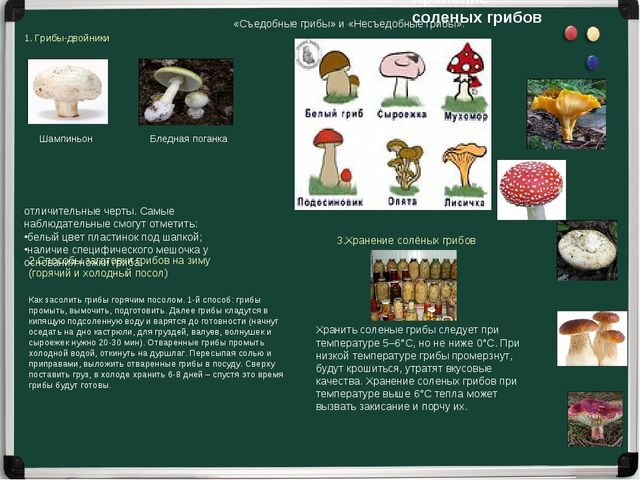 «Съедобные грибы» и «Несъедобные грибы». 1. Грибы-двойники Шампиньон Бледная...