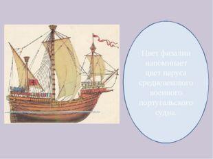 Цвет физалии напоминает цвет паруса средневекового военного португальского су