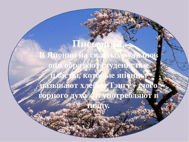 Письмо 14. В Японии на склонах вулканов они образуют студенистые пласты, кото...