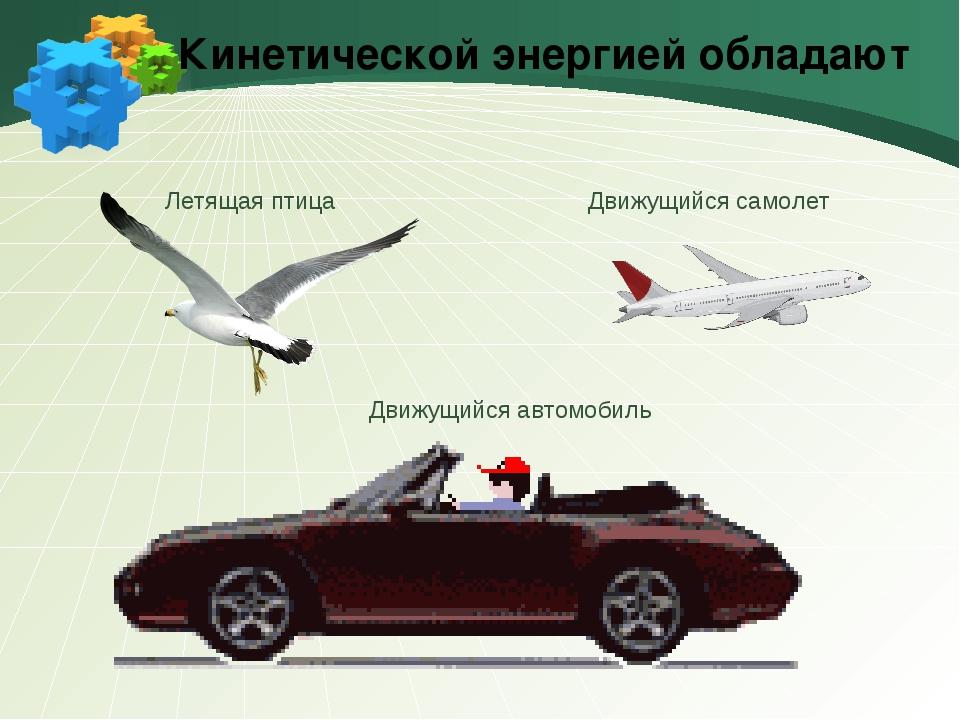 Кинетической энергией обладают Движущийся самолет Летящая птица Движущийся ав...