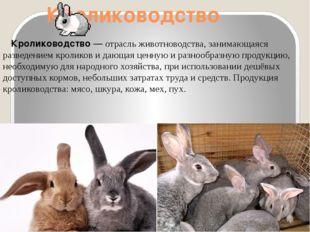 Кролиководство Кролиководство— отрасльживотноводства, занимающаяся разведе