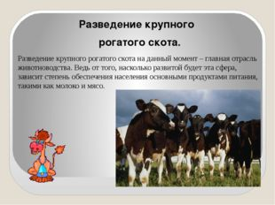 Разведение крупного рогатого скота. Разведение крупного рогатого скота на да