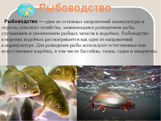 Рыбоводство Рыбоводство— одно из основных направленийаквакультурыи отрасл...