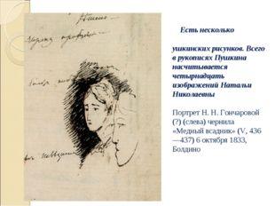 Есть несколько пушкинских рисунков. Всего в рукописях Пушкина насчитывается