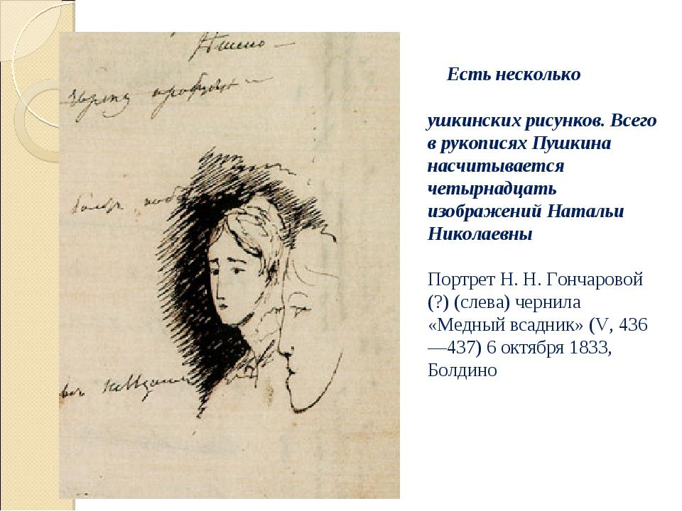 Есть несколько пушкинских рисунков. Всего в рукописях Пушкина насчитывается...