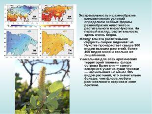 Экстремальность и разнообразие климатических условий определили особые формы