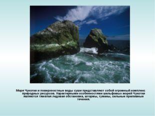 Моря Чукотки и поверхностные воды суши представляют собой огромный комплекс п