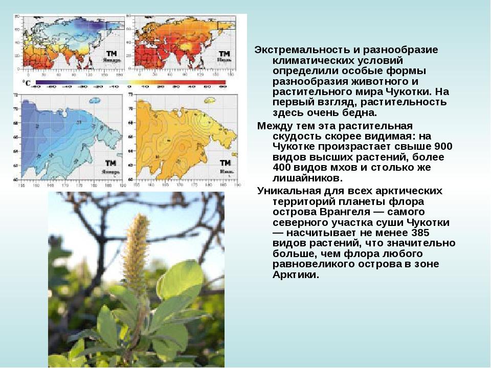 Экстремальность и разнообразие климатических условий определили особые формы...