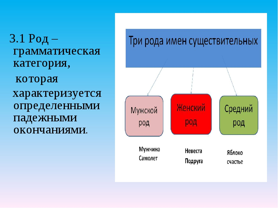 3.1 Род – грамматическая категория, которая характеризуется определенными па...