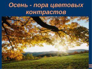 Осень - пора цветовых контрастов