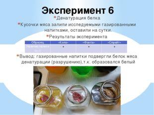 Эксперимент 6 Денатурация белка Кусочки мяса залили исследуемыми газированным
