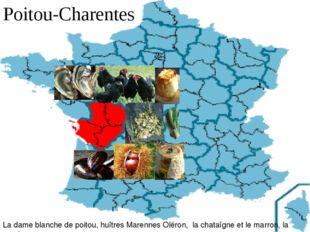 Poitou-Charentes La dame blanche de poitou, huîtres Marennes Oléron, la chat