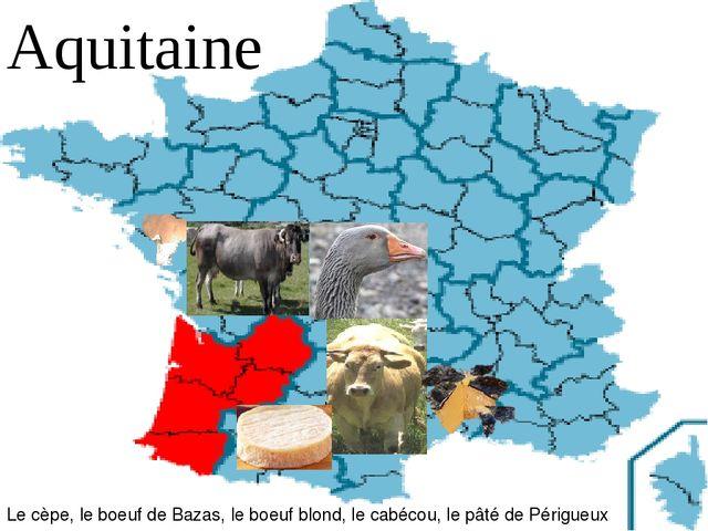 Aquitaine Le cèpe, le boeuf de Bazas, le boeuf blond, le cabécou, le pâté de...