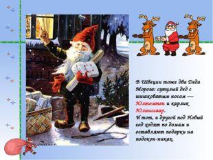 В Швеции тоже два Деда Мороза: сутулый дед с шишковатым носом— Юлтомтен и ка