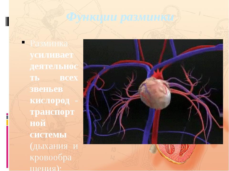 Функции разминки Разминка усиливает деятельность всех звеньев кислород - тран...