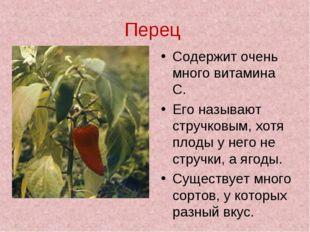 Перец Содержит очень много витамина С. Его называют стручковым, хотя плоды у