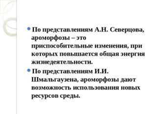 По представлениям А.Н. Северцова, ароморфозы – это приспособительные изменен
