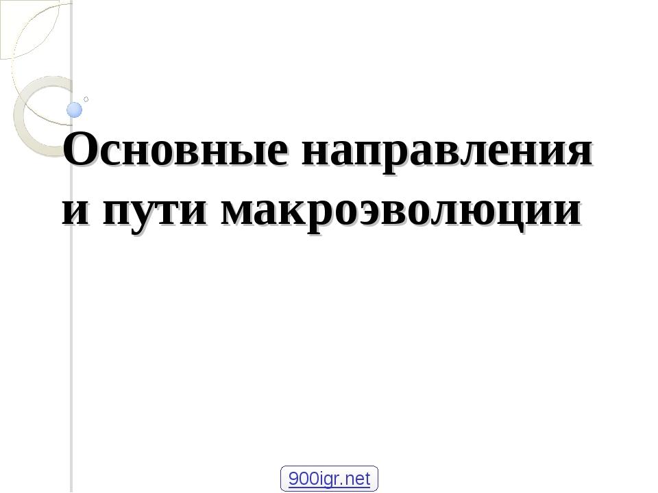 Основные направления и пути макроэволюции Учитель биологии МАОУ Лицей № 5 Сал...