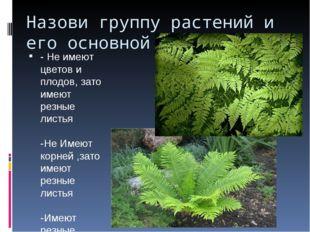 Назови группу растений и его основной признак - Не имеют цветов и плодов, зат