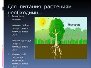 Для питания растениям необходимы… Темнота и тишина -Углекислый газ , вода , с