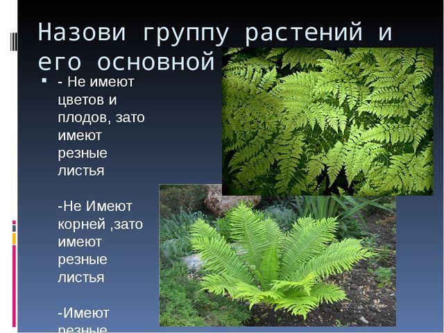 Назови группу растений и его основной признак - Не имеют цветов и плодов, зат...