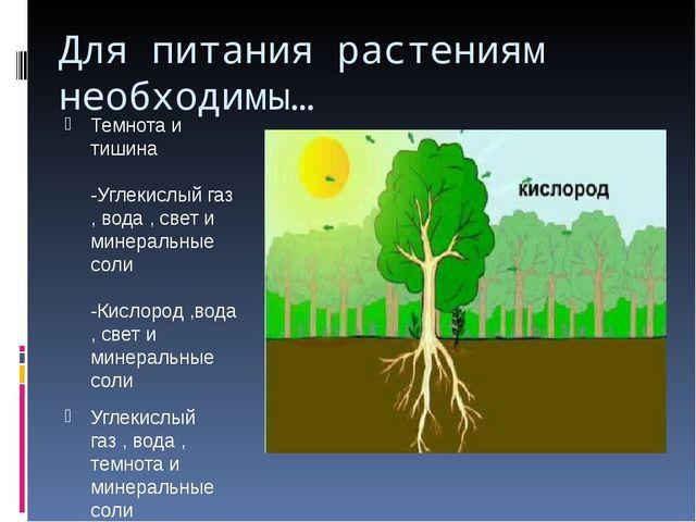 Для питания растениям необходимы… Темнота и тишина -Углекислый газ , вода , с...