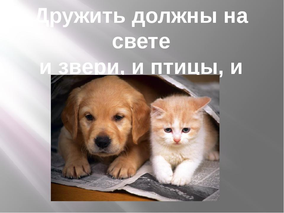 Дружить должны на свете и звери, и птицы, и дети!
