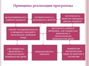 Принципы реализации программы целенаправленность учебного процесса систематич
