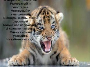 Я тигренок полосатый Рыжеватый и хвостатый Многоусый и смышленый В общем, оче