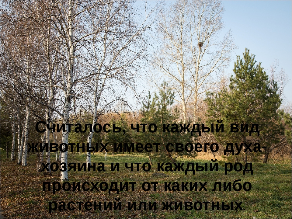 Считалось, что каждый вид животных имеет своего духа-хозяина и что каждый род...