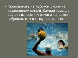 Проводится в неглубоком бассейне, разделенном сеткой. Каждая команда состоит