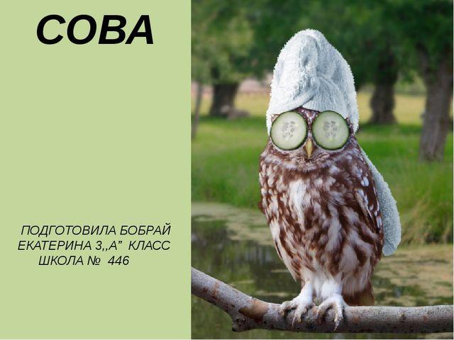 "СОВА ПОДГОТОВИЛА БОБРАЙ ЕКАТЕРИНА 3,,А"" КЛАСС ШКОЛА № 446"