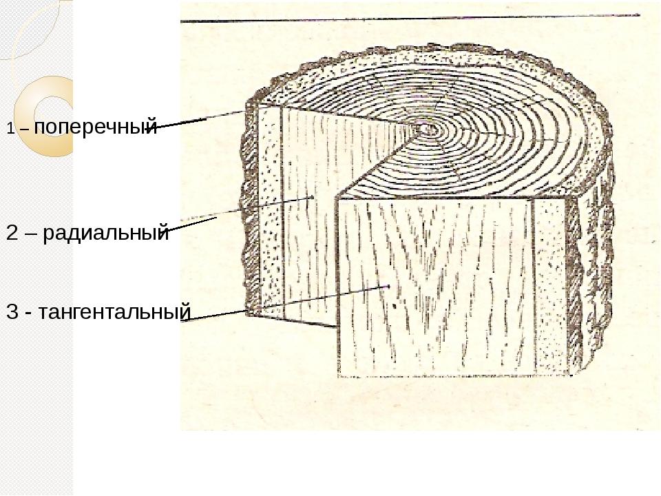 1 – поперечный 2 – радиальный 3 - тангентальный