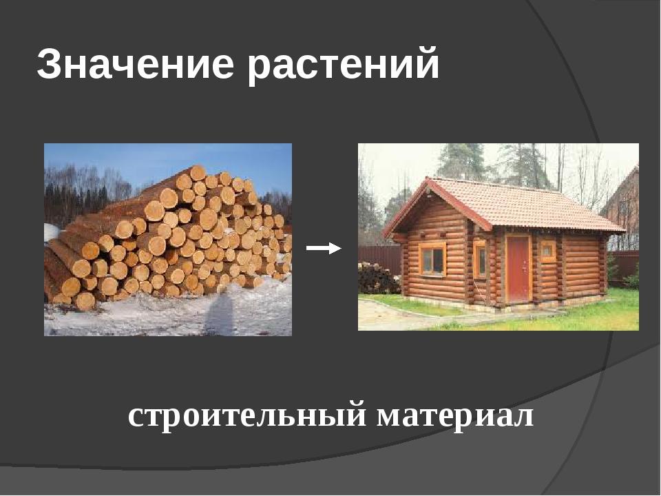 Значение растений строительный материал