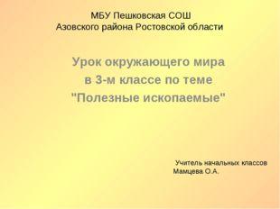 МБУ Пешковская СОШ Азовского района Ростовской области Урок окружающего мира