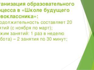 Организация образовательного процесса в «Школе будущего первоклассника»: - пр