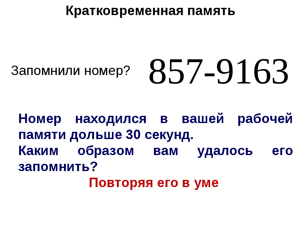 Запомнили номер? 857-9163 Номер находился в вашей рабочей памяти дольше 30 се...