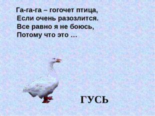 Га-га-га – гогочет птица, Если очень разозлится. Все равно я не боюсь, Потом