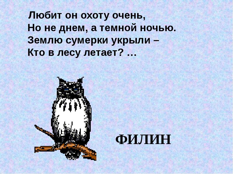 Любит он охоту очень, Но не днем, а темной ночью. Землю сумерки укрыли – Кто...