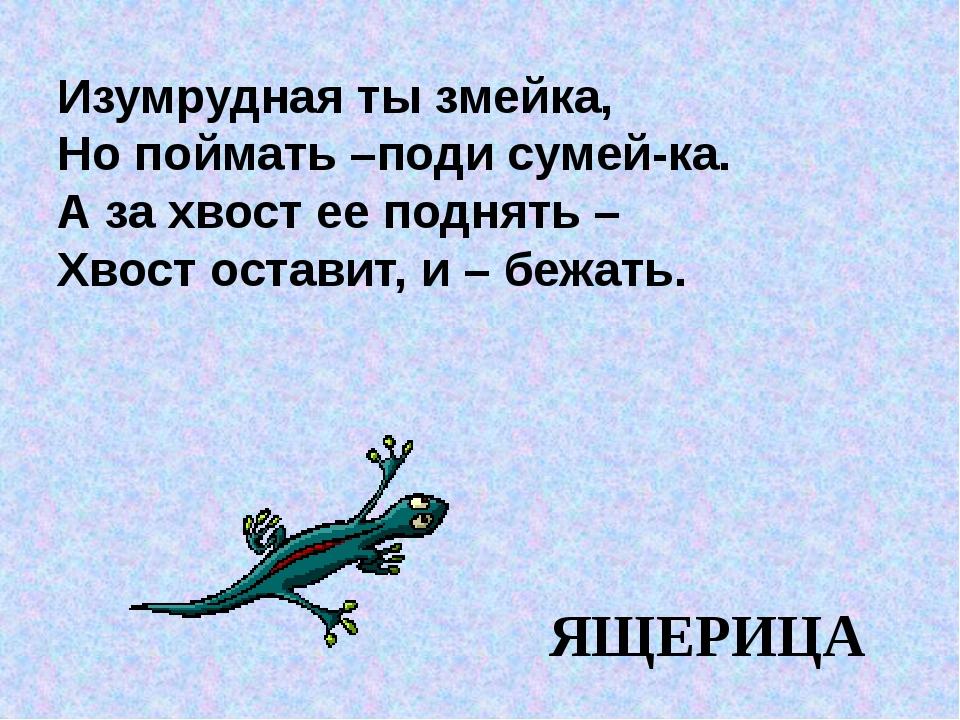 Изумрудная ты змейка, Но поймать –поди сумей-ка. А за хвост ее поднять – Хвос...