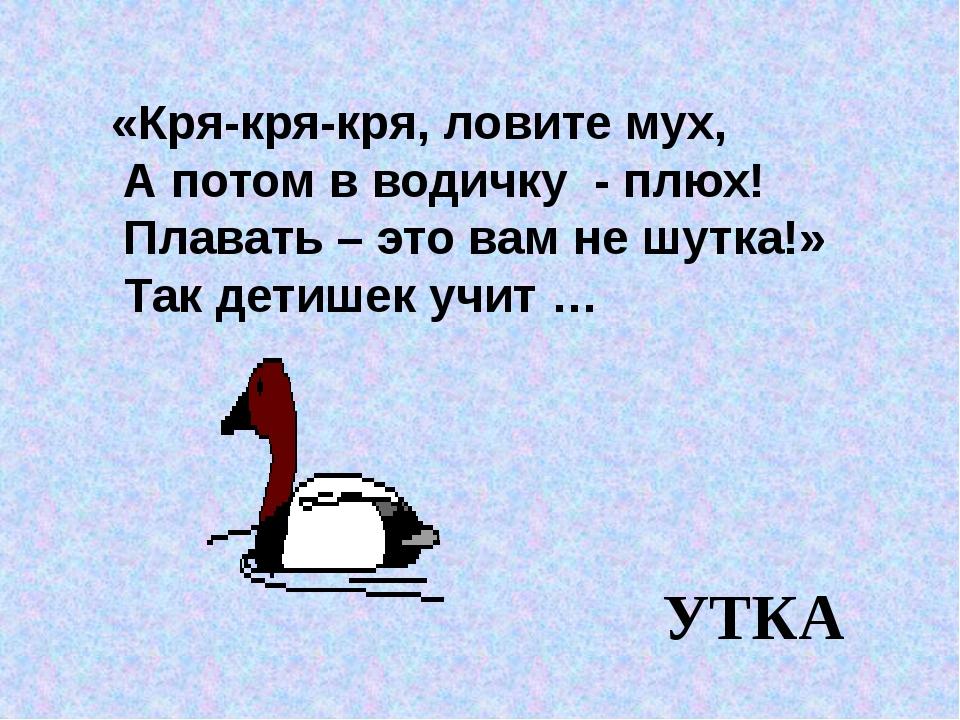 «Кря-кря-кря, ловите мух, А потом в водичку - плюх! Плавать – это вам не шут...