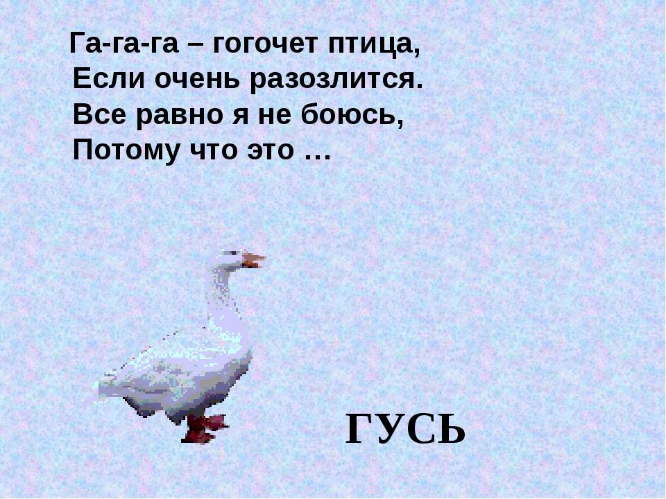 Га-га-га – гогочет птица, Если очень разозлится. Все равно я не боюсь, Потом...